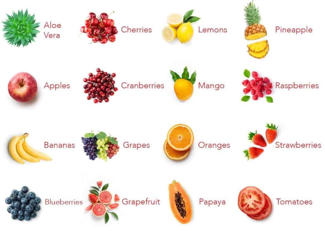 Balance of Nature Ingredients Fruit