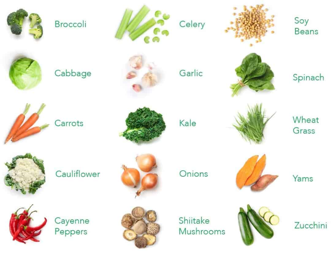 Balance of Nature Ingredients Veggie